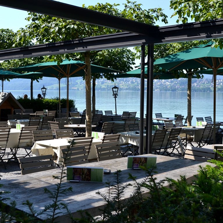 Seerose-Resort-and-Spa-Meisterschwanden_Seeterrasse_2.jpg