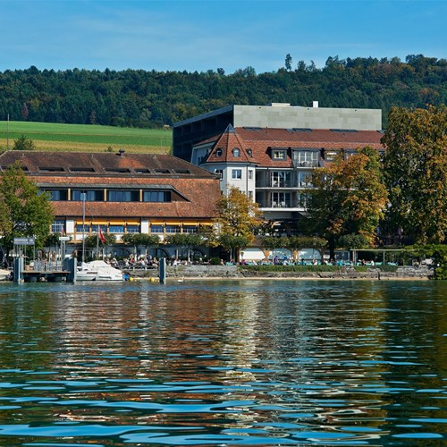 Seerose-Resort-and-Spa-Meisterschwanden_Hotel_4.jpg
